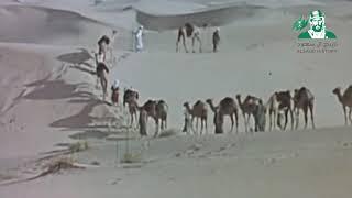 تحميل و استماع حنا العرب يامدعين العروبة MP3