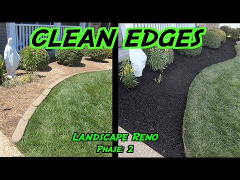 , title : 'Clean Edges and Mulching Flower Beds | Landscaping Renovation: Phase 2