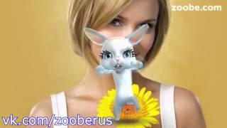 Про говешки и про жизнь - Zoobe Зайка :)