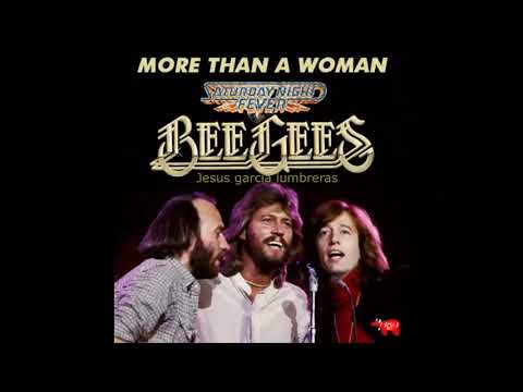 Bee Gees More than a woman Instrumental