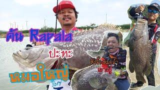 เทสคัน Rapala Rapalero และ หัวจิ๊กหมอลำกับปลาหมอไซส์จัมโบ XZUKA TV