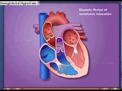 Fit für hypertensive Krise