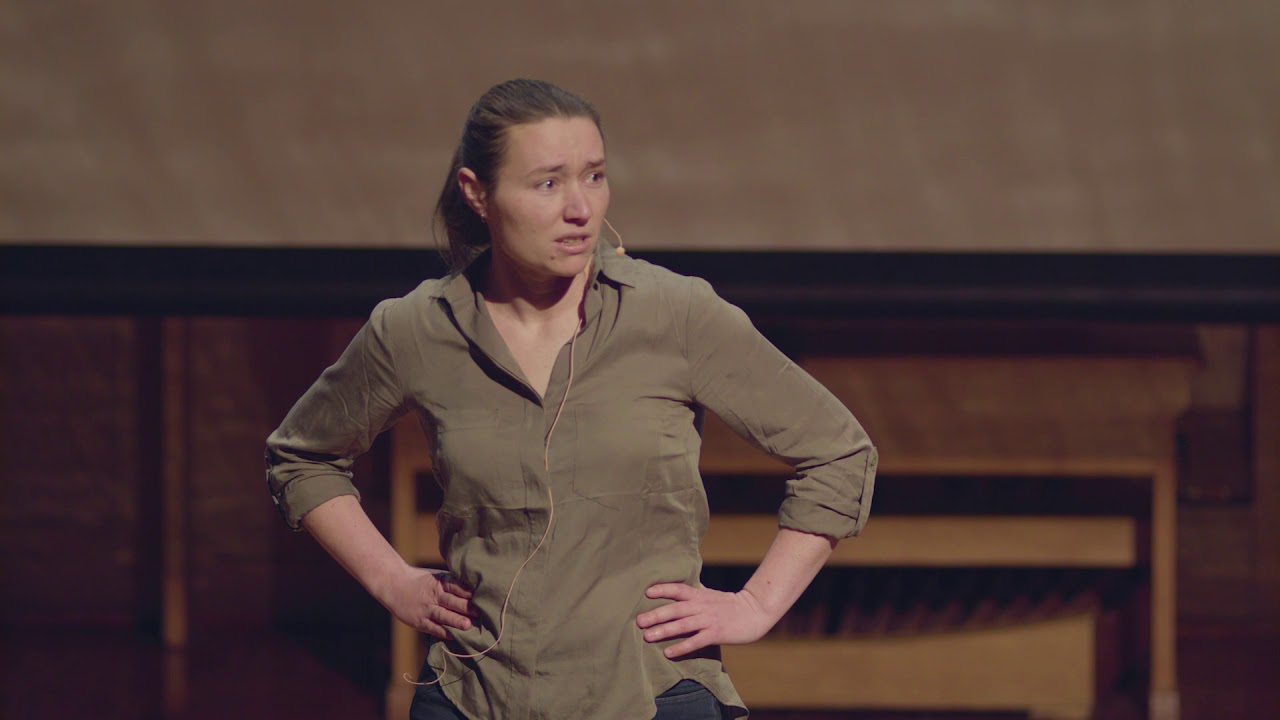 Play video: Lauren Roman - Plastic ingestion in Australian seabirds