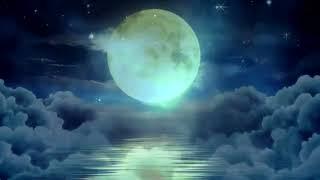 «Вой на Луну» (лучшее и неизданное)  Сектор газа