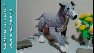 Питбуль, ч.1. Pitbull. р.1. Amigurumi. Crochet.  Амигуруми. Игрушки крючком.