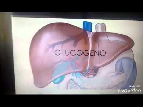 Diadema con úlceras tróficas de insulina