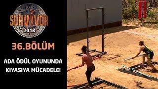 Ada oyununda nefes kesen mücadele! | 36.Bölüm | Survivor 2018