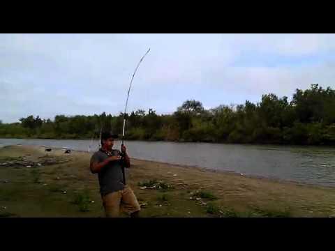 Giri che pescano in Russia