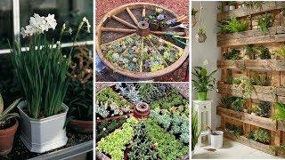 10 Edible Garden Ideas