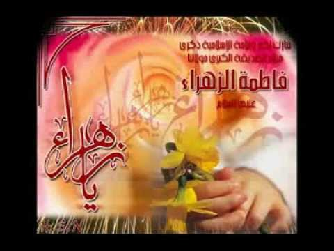 مرتضى البيضاني-اليوم فرحانين بمولد ام حسين
