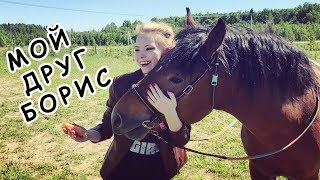 Каталась верхом на лошади   Самый Лучший День!