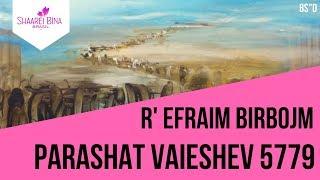 Parashat Vaieshev