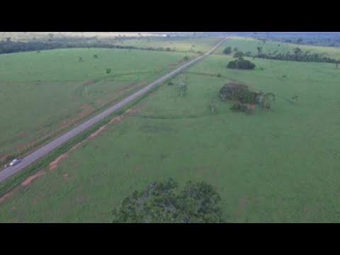 """Nuevos geoglifos """"reescriben"""" la historia de la Amazonía en Brasil"""