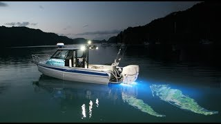 FISH Hunt at Night with Light Motion - fishing Boat