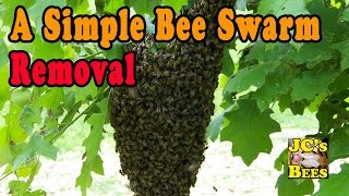 A Simple Bee Swarm Removal