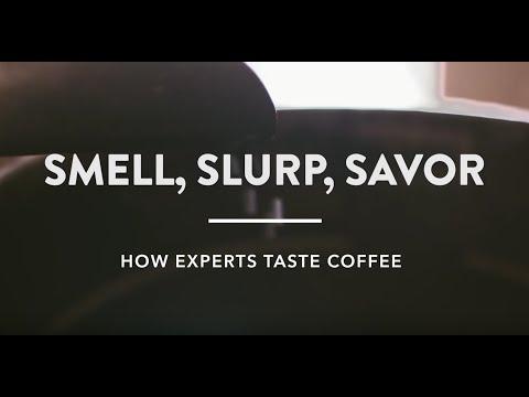 Smell, Slurp, Savor: How Experts Taste Coffee