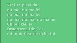 Dragostea Din Tei (With Lyrics)