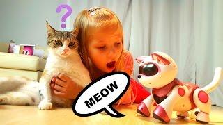 У Николь две кошки и мышка ! Дети играют в кошки мышки