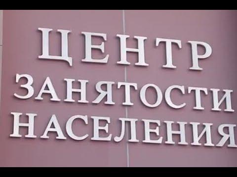 Центр занятости пособие по безработице штрафы и не официальная работа в России