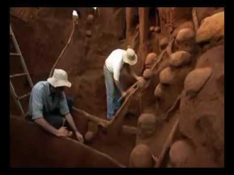 مساكن النمل | عجيب جدا ً