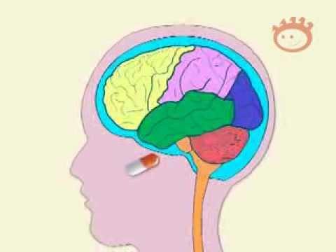 El dolor de cabeza el peso excesivo