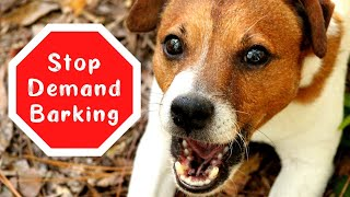 Dog Barks for Attention ~ What You Can Do ~ Stop a Dog from Barking for Attention