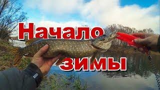 Отчеты о рыбалке ростов на дону