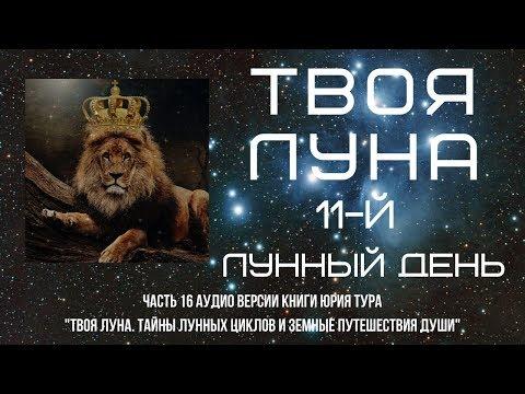ТВОЯ ЛУНА. 11-й ЛУННЫЙ ДЕНЬ
