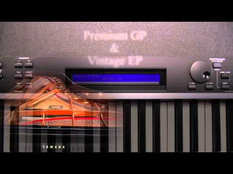 Yamaha cp4 stage piano pmt online for Yamaha cp4 weight