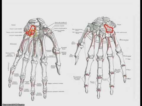 Osteocondrosi come trattarla