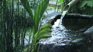 やさしい水の音 熟睡導入 Relaxing Sounds of clear stream