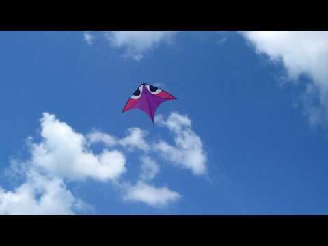 Aerobe / Wala Einleiner Drachen / single line kite von flying wings