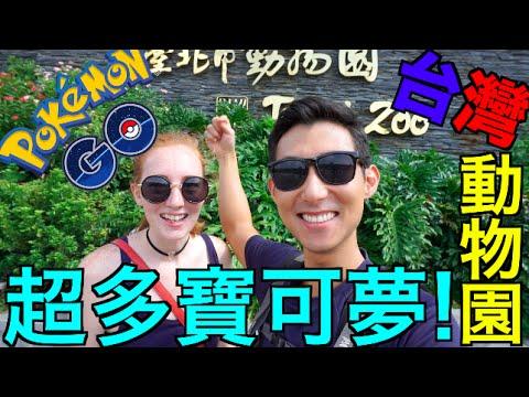 Pokemon GO 精靈寶可夢GO :跟美根去台北動物園!