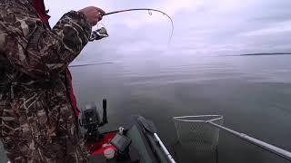 Рыбалка на горьковском водохранилище летом