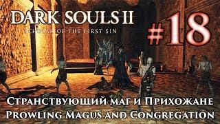 Dark Souls 2: Странствующий маг и прихожане / Prowling Magus and Congregation