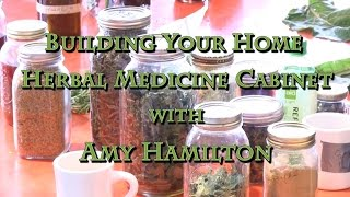 Building Your Home Herbal Medicine Cabinet with Amy Hamilton