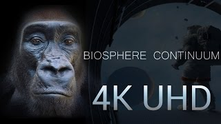 4K | Biosphere Continuum FULL MOVIE - Extended Version.