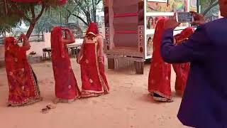 New Rajasthani Video Song 2020 || Shekhawati Wedding Dance Performance || Marwadi Marriage Dance
