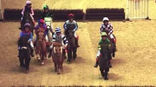 The Osborne Refrigerators Shetland Pony Grand National Highlights
