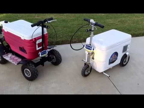 Best motorized cooler to buy?