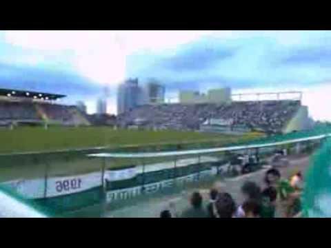 """dale dale dale dale Chape - www.chapemultimidia.com.br"" Barra: Barra da Chape • Club: Chapecoense"