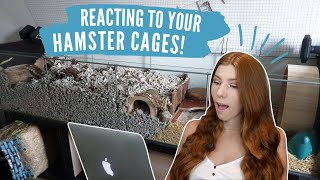 Reacting To My Subscribers Hamster Cages