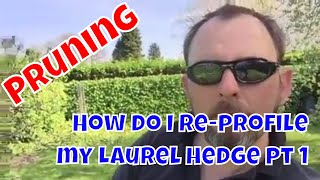How do I re-profile my Laurel hedge pt 1 - Pruning
