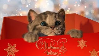 Мой маленький МИЛЫЙ КОТЕНОК Новогодние мультики для детей про котят Игра Симулятор кота #Малышерин
