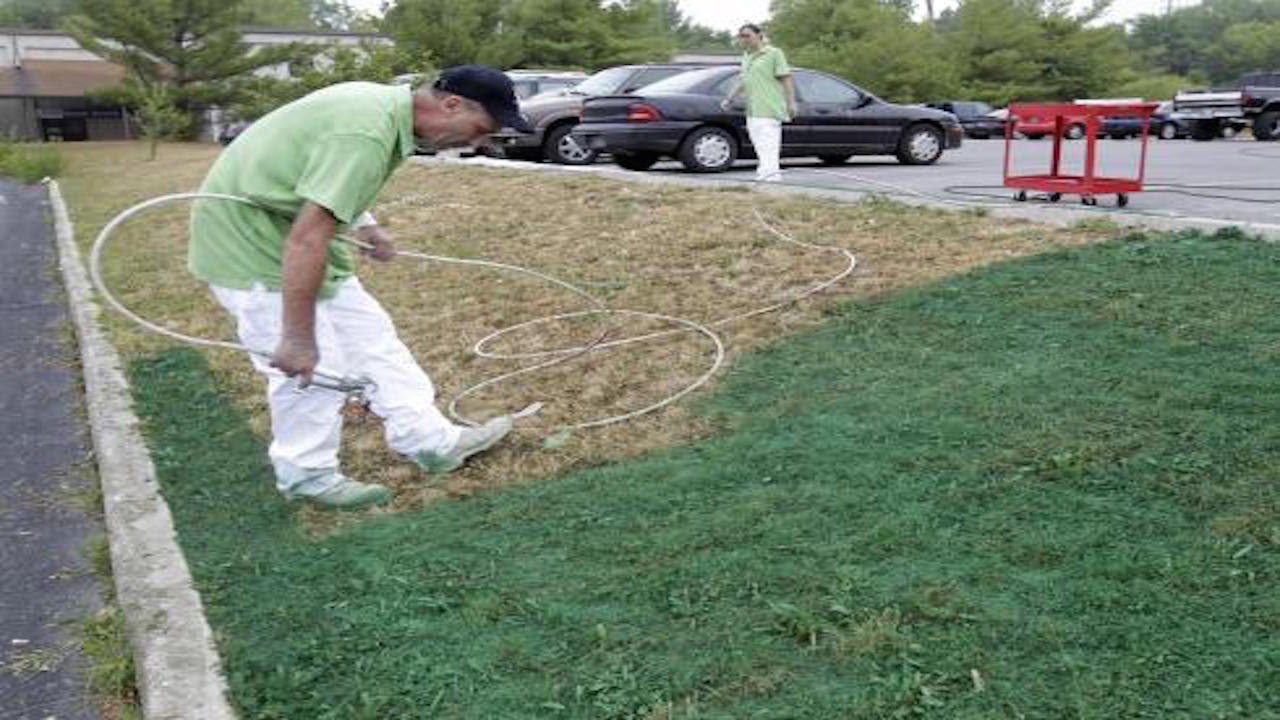 How To Keep Your Lawn Green During A Drought thumbnail