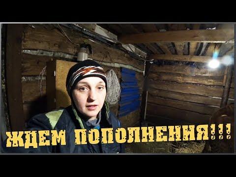 Деревенские будни / Что будем сажать / Ждём пополнения / Семья в деревне