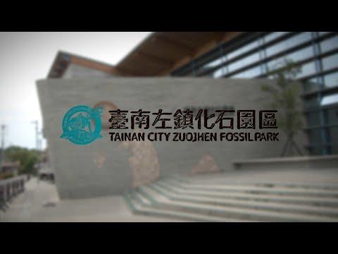 超時空化石學園:解密臺灣的前前前世