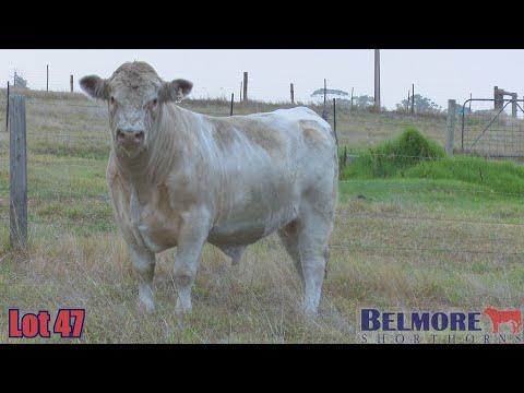 BELMORE KEEPER Q297