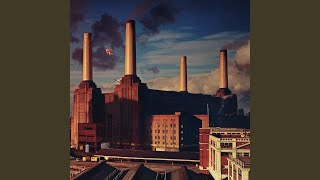"""Video thumbnail of """"Pink Floyd - Dogs"""""""