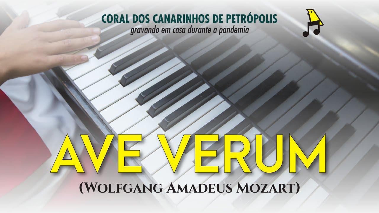 Canarinhos de Petrópolis | Ave verum (Mozart) – Gravando em casa #03